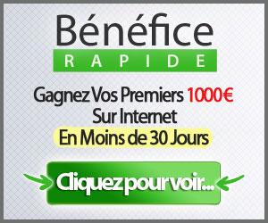 Télécharger Bénéfice Rapide par Sylvain Wealth Pdf Gratuit